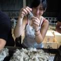Recherche de jarre cette fibre piquante indésirable