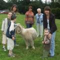 Visite du parc des animaux adultes