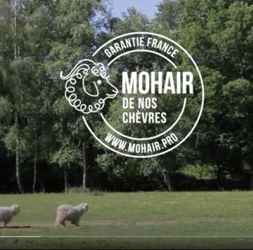 """Vidéo """"mohair de nos chèvres"""""""