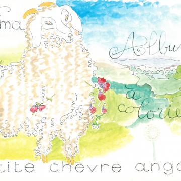 """Album à colorier """"La petite chèvre angora"""""""