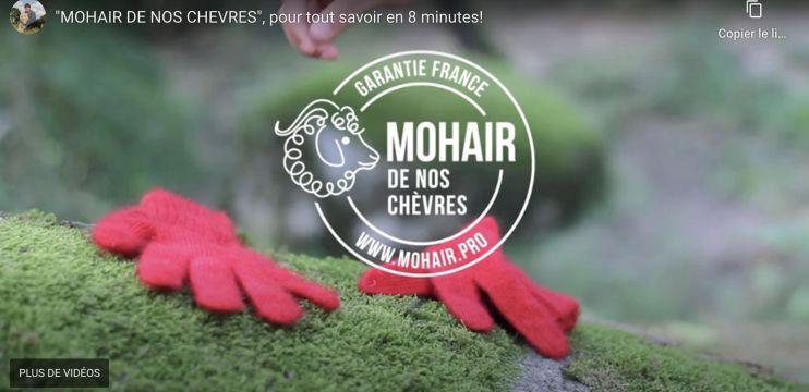 """Vidéo """"mohair de nos chèvres"""" en 8 minutes"""