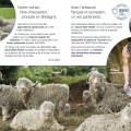 Notre catalogue produits Mohair du Pays de Corlay