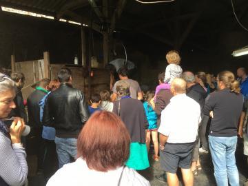 La foule regarde le tondeur en plein travail