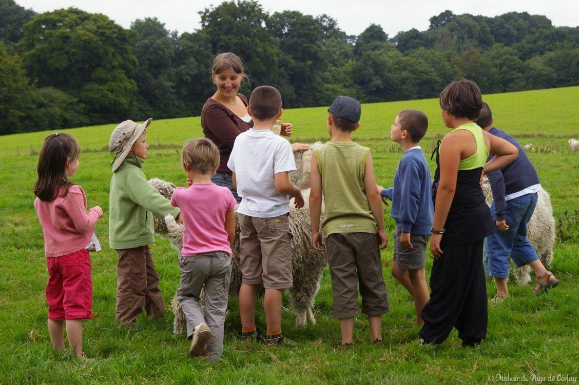 Visitez notre ferme pédagogique!